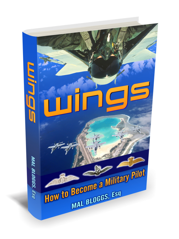 01_Wings_3D